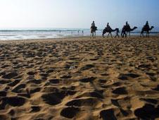 El pueblo bereber de Sidi Kaouki, situado en pleno oc�ano Atl�ntico, es el destino marroqu� perfecto para surferos y bohemios.