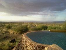 Elegantes jirafas deambulan en el Parque Nacional Amboseli.
